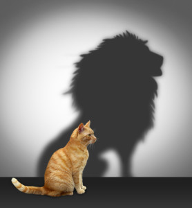Pussy cat with shadow of a lion: Relationship Recovery and the codependent